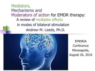 EMDRIA conference 2016 image